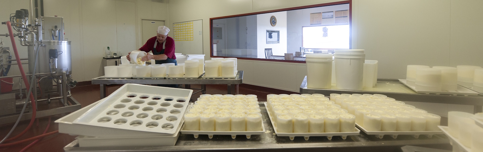 Apostle Whey Cheese Making