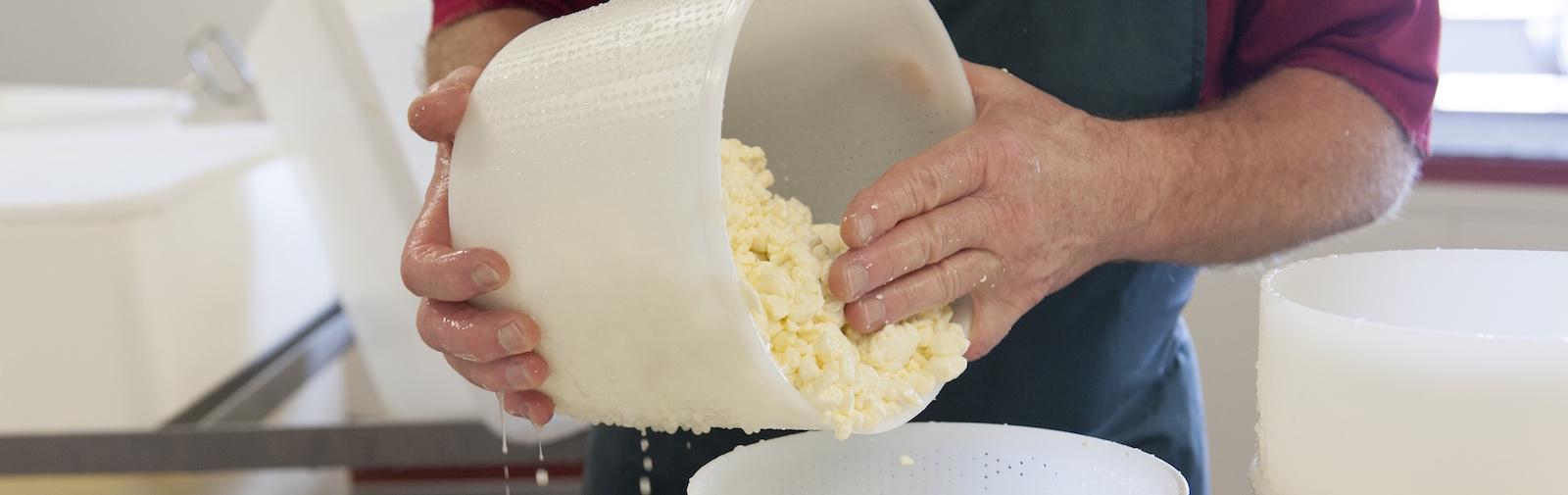 Apostle Whey Cheese Making