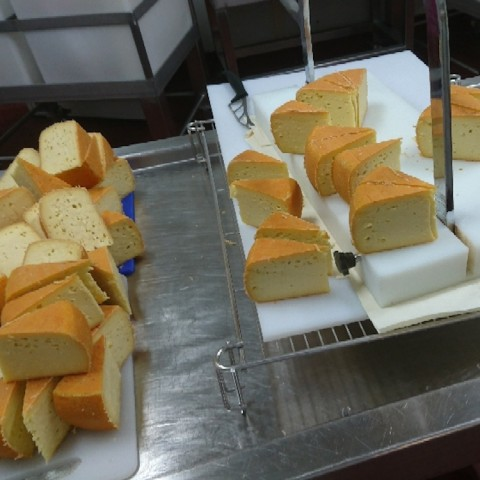Apostle Whey Cheese Kitchen Hand Needed